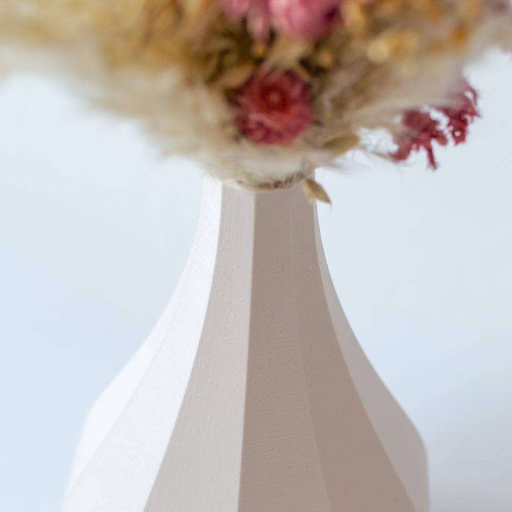 Photo zoom vase Figue